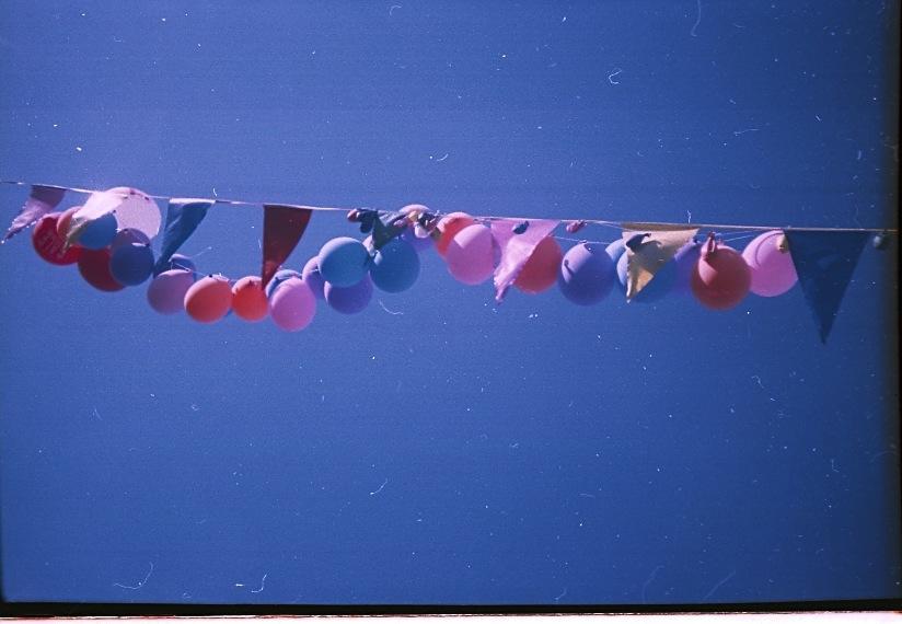 dave penguin balloons