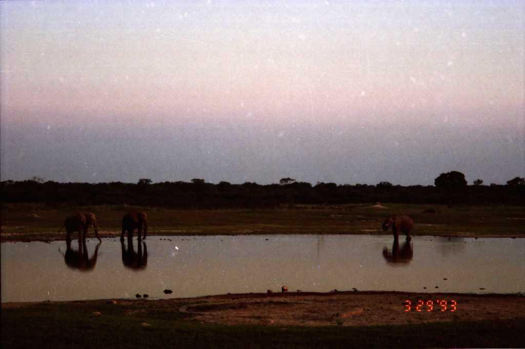 fnd africa tfarah0002